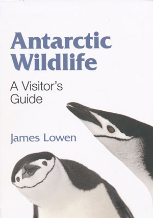 Antarctic Wildlife A Visitors Guide