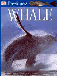 Whale Eyewitness Guide