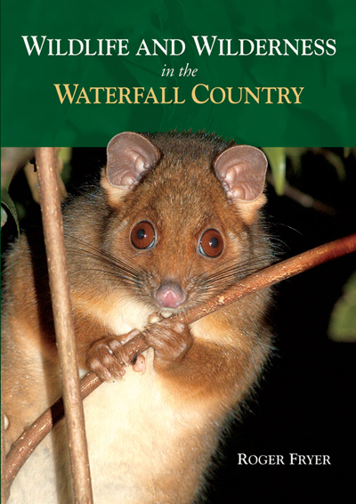 Wildlife & Wilderness in the Waterfall Country
