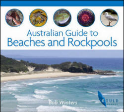 Australian Guide to Beaches and Rockpools
