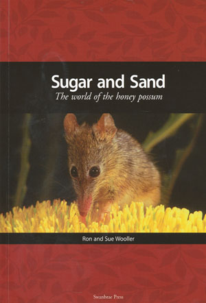 Sugar and Sand The World of the Honey Possum
