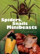 Spiders  Snails and Minibeasts of Australia
