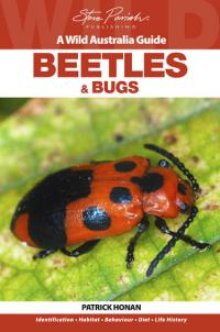 Beetles and Bugs  Wild Australia Guide